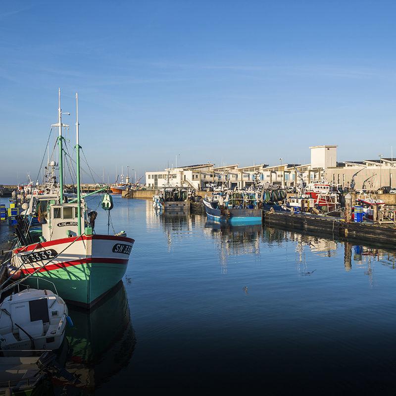 Projet d'aménagement du port de La Turballe